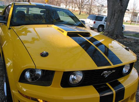 mustang gt   pictures  hood pins page