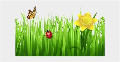 Spring Nature Clip Clipart Flowers Grass Cartoons