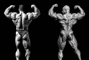 Watch  Best Backs Of All Time In Bodybuilding History  U2013 Fitness Volt