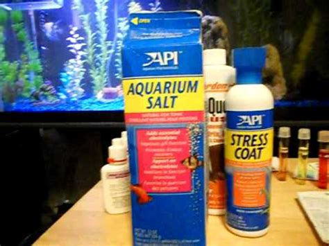 remove nitrates from aquarium how to remove nitrites nitrates and ammonia from a freshwater aquarium youtube
