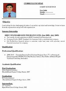 resume examples for it professionals best resume formats for india download