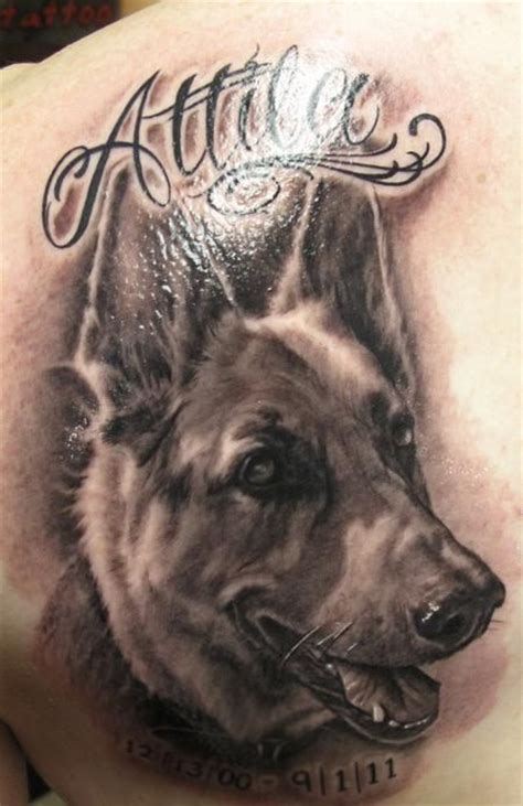 coolest german shepherd tattoo designs   world