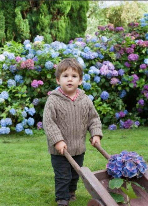 les 25 meilleures id 233 es concernant petits bassins de jardin sur petites piscines