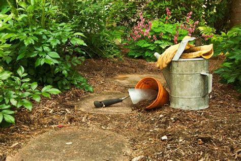How To Fix Clay Soil Before You Stop Gardening-a Green Hand
