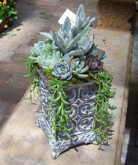 ideas for planting succulents 70 indoor and outdoor succulent garden ideas shelterness