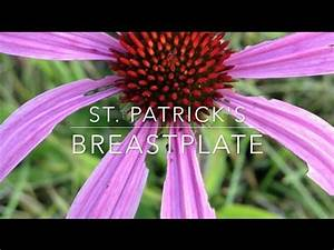 St. Patrick's Breastplate for Tim - YouTube