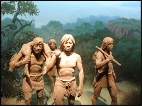 hunter gatherers  deep time perspectives  northeast