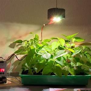 Lampen Für Pflanzen : pflanzen led pflanzenlampen shop deutschland sterreich ~ A.2002-acura-tl-radio.info Haus und Dekorationen