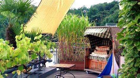 sichtschutz auf dem balkon durch pflanzen ndrde