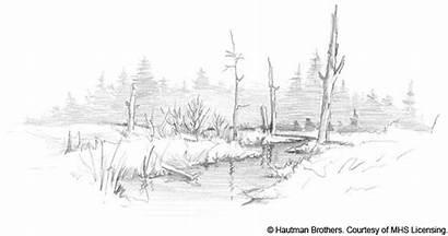 Creek Sketch Artwork 1135 Hb