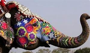 #elephant #color #paint #indian elephant #indian design # ...