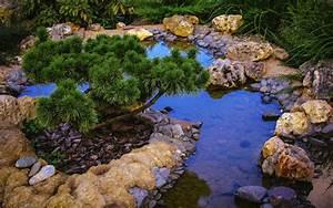 Erwärmung Wasser Berechnen : biotop im garten anlegen umfassende tipps f r das natur gew sser ~ Themetempest.com Abrechnung
