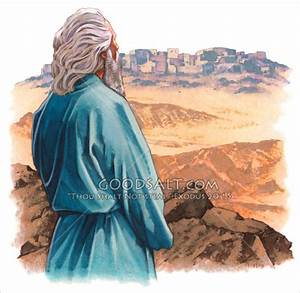 A biblical character overlooking a city.