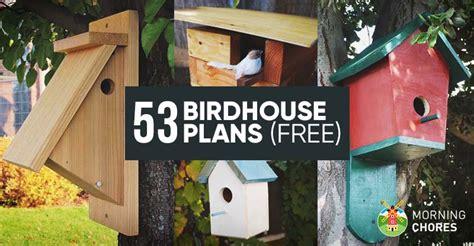 diy bird house plans   attract    garden