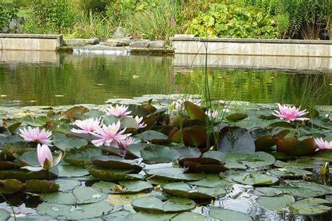Garten Und Landschaftsbau Greven by Garten Und Landschaftsbau M 252 Nsterland Plus