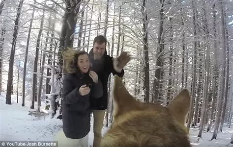 Josh And Addie Burnette Entrust Pet Dog To Film Their