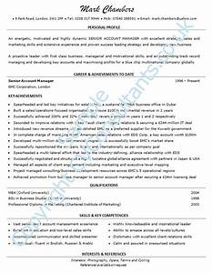 example of a good cv professional help from top writers With example of a good cv
