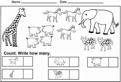 Worksheets Preschool Kindergarten Worksheet Count Coloring Animals