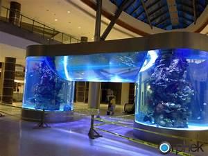 Aquarium Led Beleuchtung : led beleuchtung f r ffentliche aquarium orphek ~ Frokenaadalensverden.com Haus und Dekorationen