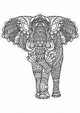 Elephant Coloring Elephants Patterns Complex Pages Adult Adults Animals Printable sketch template