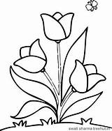 Coloring Pages Flower Flowers Easy Printable Simple Tulip Tulips Garden Sheets Colouring Toddlers Pdf Adults Floral Getdrawings Getcolorings Draw Colorings sketch template