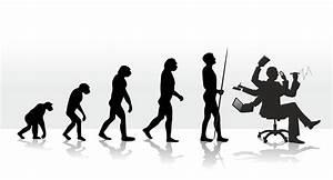 The Evolution of Stress - Paleo Plan