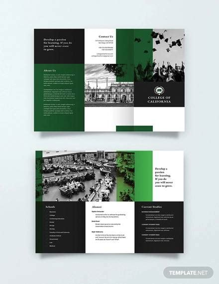 college brochures  ai psd word indesign
