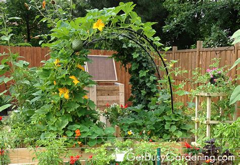 diy garden arch how to build a squash arch