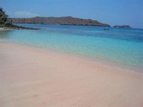 pink beach picture  komodo island komodo national
