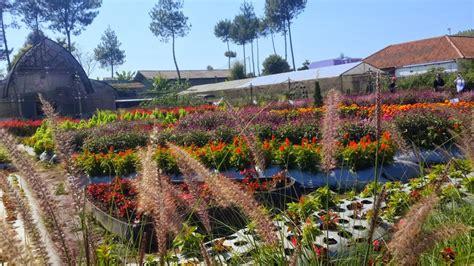 wisata taman bunga  bandung infobdgcom