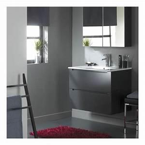 Meuble De Salle De Bain Gris : meuble de salle de bain 80 cm 2 tiroirs gris laqu ~ Preciouscoupons.com Idées de Décoration
