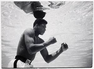 [Cassius Clay training at Sir John Hotel pool, Miami ...