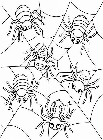 Halloween Spider Coloring Pages Web Six Sheets