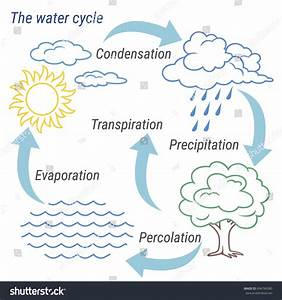 Vector Schematic Representation Water Cycle Nature Stock Vector 694784380
