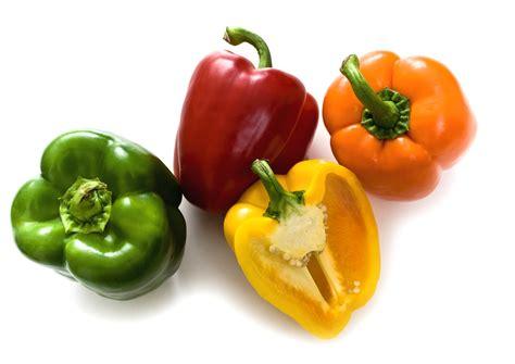 cuisiner poivron poivron recettes avec du poivron et conseils pour