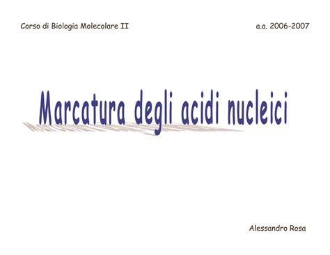 dispense biologia molecolare marcatura degli acidi nucleici dispense