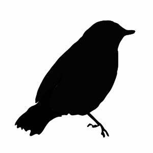 Design Black And White Birds - ClipArt Best