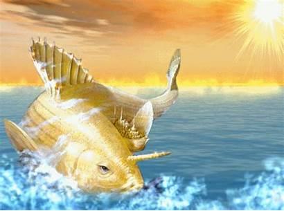 Matsya Avatar Fish Lord Vishnu Avtaar Kurma
