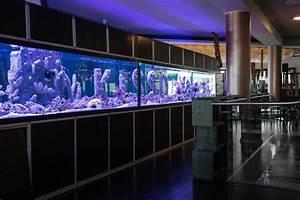 Sushi Bar Dresden : about us kisso sushi restaurant berlin ~ Orissabook.com Haus und Dekorationen