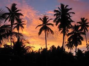 Bilder Von Palmen : sonnenuntergang palmen foto bild africa eastern africa seychelles bilder auf fotocommunity ~ Frokenaadalensverden.com Haus und Dekorationen