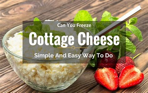 can you freeze cheese can you freeze cottage cheese simple and easy way to do
