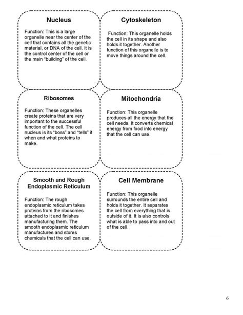 cell organelle functions games games world