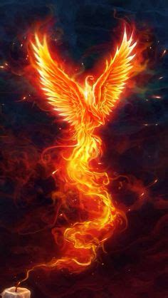 1000  images about PhOENiX on Pinterest   Phoenix, Phoenix Bird and Phoenix Tattoos