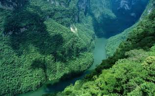Amazon River is the second longest riverin the world and it carried ...