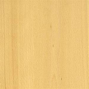 European Beech: Versatile for Cabinets, Flooring