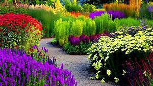 Beautiful Color Garden HD Wallpapers