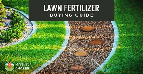 Best Lawn Fertilizer For Grass  Buying Guide And