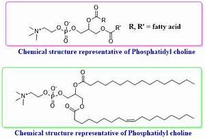 Phosphatidyl choline (from egg yolk) | CAS#8002-43-5 | CAS ...  Phosphatidylcholine