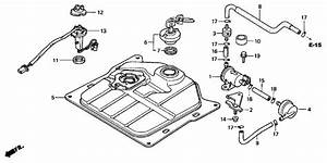 Honda Ruckus Tail Light Wiring Diagram
