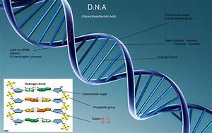 Download Science DNA Wallpaper 1920x1200 | Wallpoper #313509